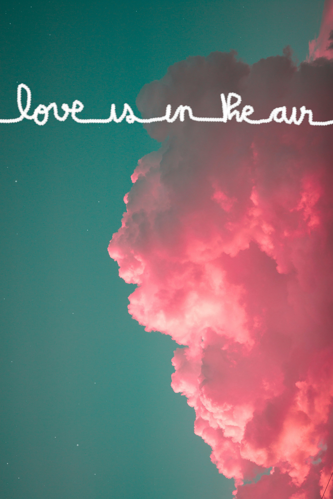 Love is in the air, affiche